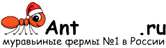 Муравьиные фермы AntFarms.ru - Ульяновск